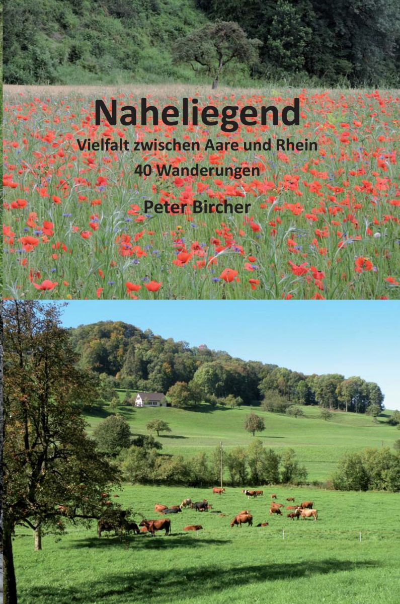 Naheliegend - Peter Bircher